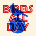 Birds All Day Podcast: 134. Concerning Pillars of the Roster